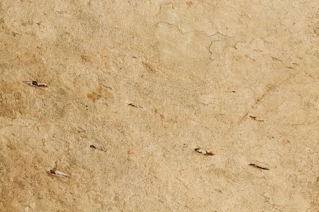 Copie o espaço concreto superfície fundo Foto gratuita
