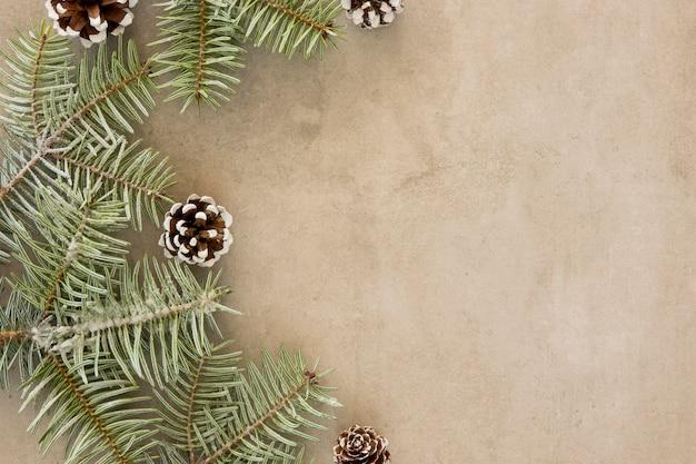 Copie o espaço verde folhas de pinheiro Foto gratuita