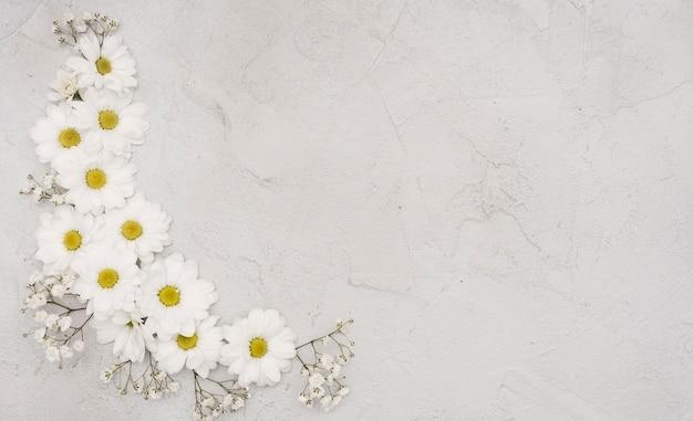 Copie o fundo do espaço com flores da primavera Foto gratuita