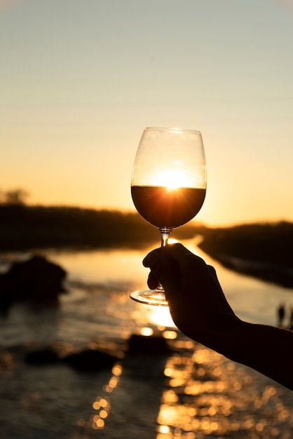 Copo de vinho com sol brilhando nas costas Foto gratuita
