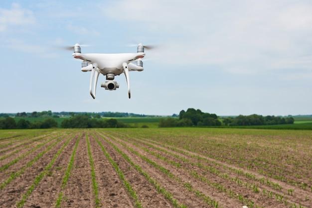 Copter quad drone com câmera digital de alta resolução em campo de milho verde, agro Foto gratuita