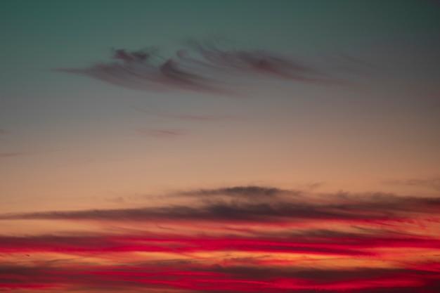 Cor vermelha em um lindo coquetel Foto gratuita