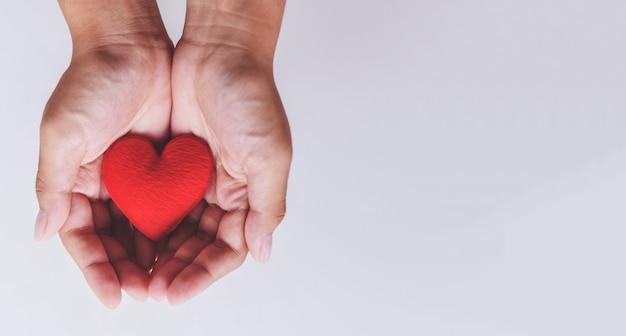 Coração na mão por filantropia Foto Premium