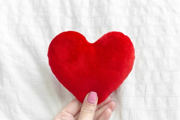Coração nas mãos Foto Premium