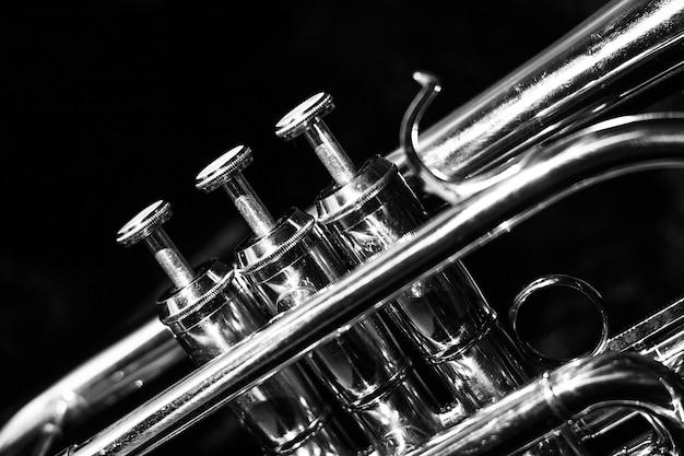 Corneta musical clássica de preto e branco. Foto Premium