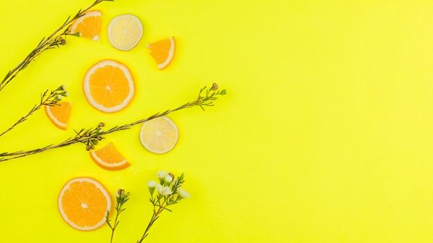 Cortar frutas cítricas e flores no fundo brilhante Foto gratuita