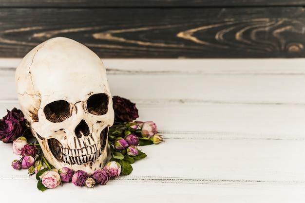 Crânio assustador e flores lilás Foto gratuita