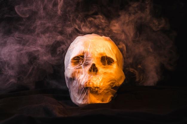 Crânio esfumaçado embalado em saco plástico Foto gratuita