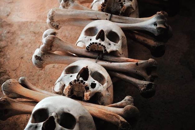 Crânios humanos com ossos pendurados em um muro de concreto. Foto Premium