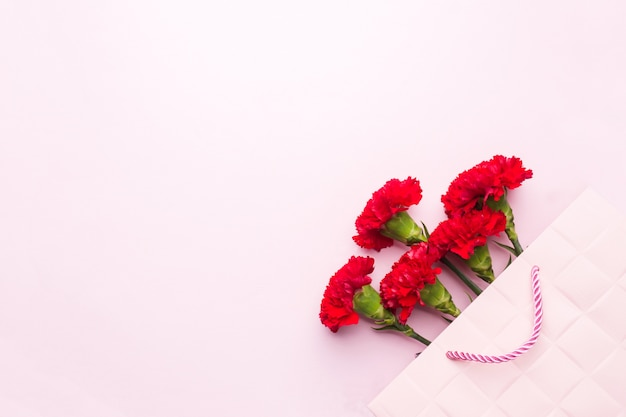 Cravos vermelhos no fundo rosa com espaço de cópia. cartão do dia das mães, dia dos namorados. Foto Premium