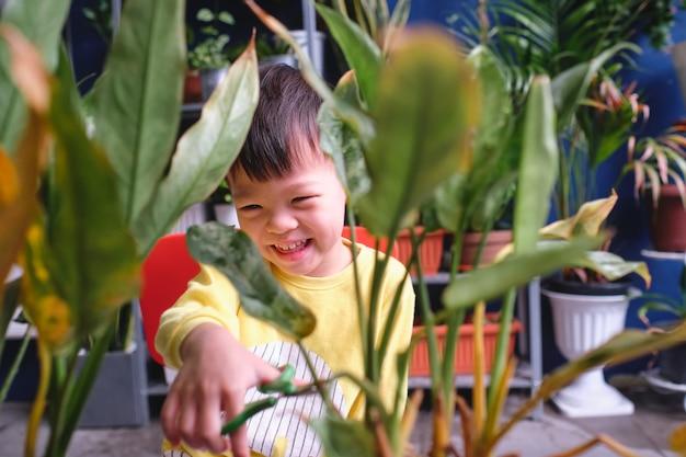 Criança asiática menino criança se divertindo cortando um pedaço de uma planta em casa, introduzir habilidades de tesoura para crianças, criança em casa, Foto Premium