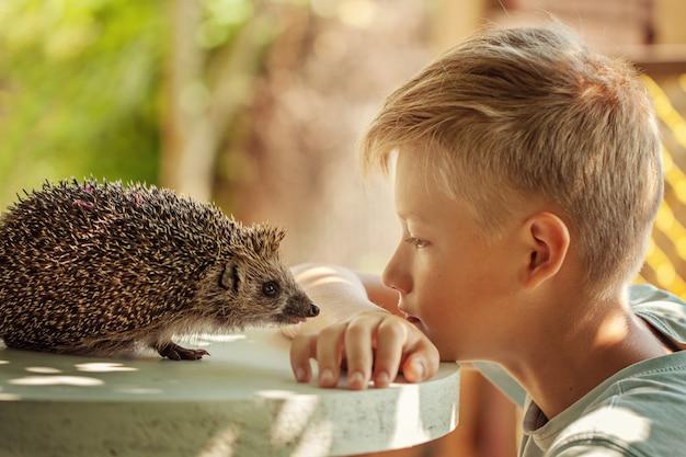 Criança com animal de estimação. menino e ouriço olhando um ao outro Foto Premium