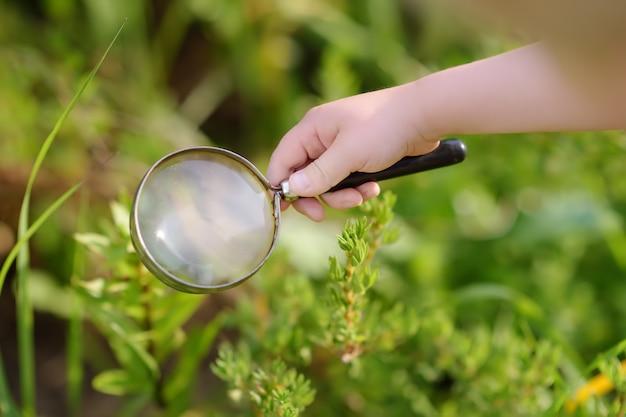Criança explorando a natureza com lupa. fechar-se. Foto Premium