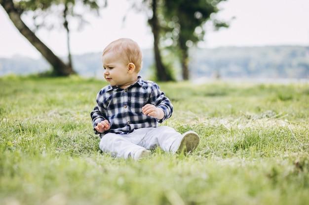 Criança pequena bonito do menino que senta-se na grama no parque Foto gratuita