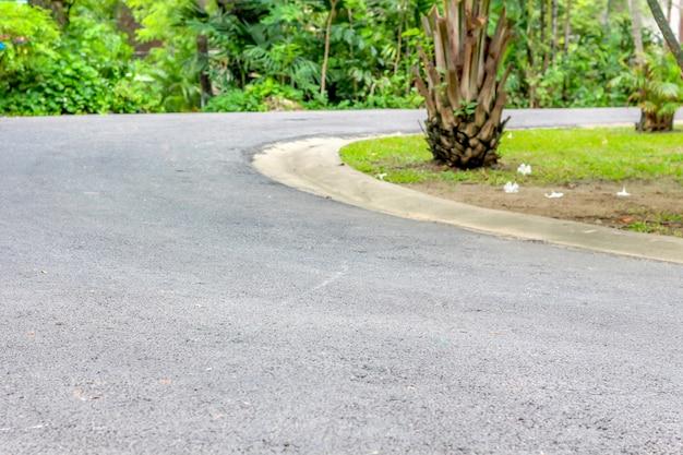 Curva do caminho da estrada para a floresta Foto Premium