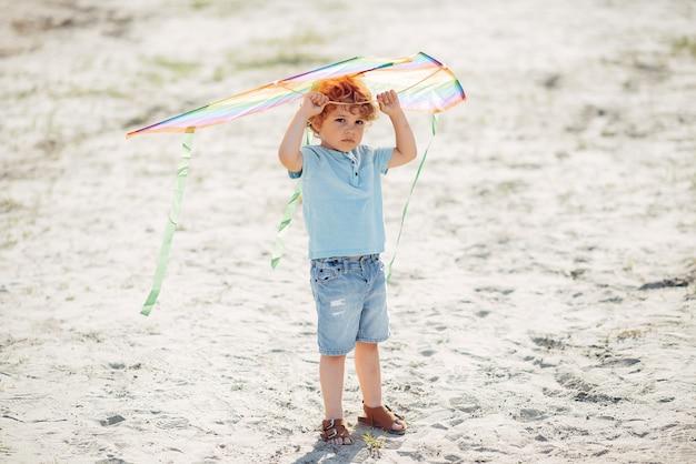 Cute, criança pequena, em, um, verão, campo, com, um, papagaio Foto gratuita