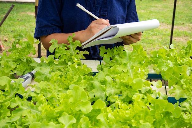 Dados do registro do agricultor do close up da planta hidropônica. agricultura moderna para não o solo. Foto Premium