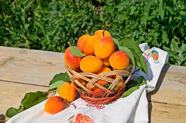 Damascos doces maduros Foto Premium