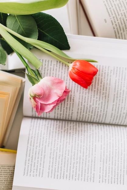 de cima de flores em livros 23 2147779272 - Nas cenas de abril, o Dia mundial do Livro