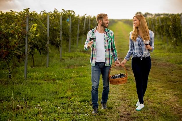 Degustação de vinhos no vinhedo Foto Premium