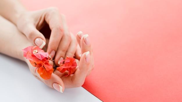 Delicadas mãos segurando flores vermelhas com copyspace Foto gratuita