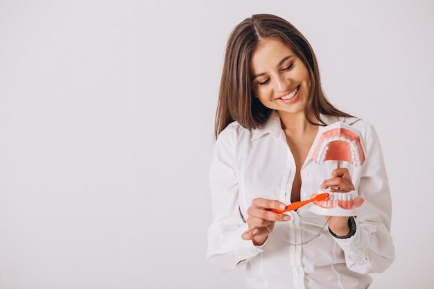 Dentista, com, odontologia, ferramentas, isolado Foto gratuita