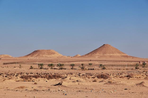 Deserto do saara no coração da áfrica Foto Premium