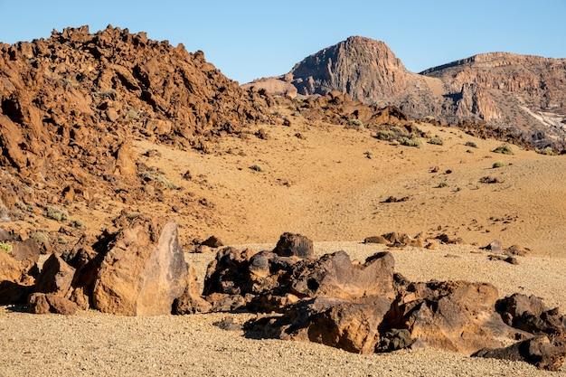 Deserto tropical com rochas Foto gratuita
