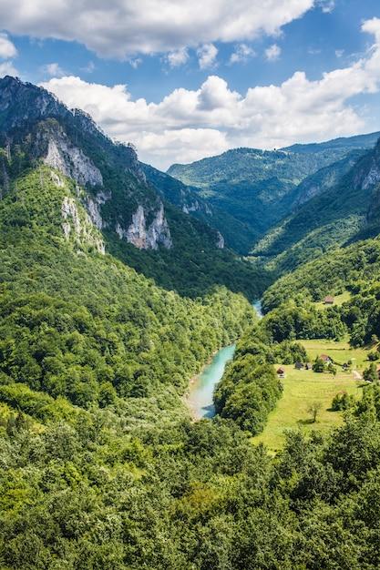 Desfiladeiro do rio tara nas montanhas do montenegro Foto Premium