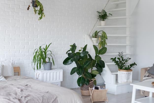 Design de interiores de quartos elegantes com vasos de plantas. Foto Premium