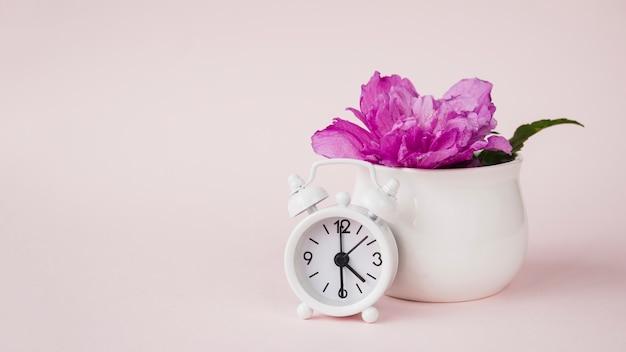 Despertador em frente a flor de peônia roxa no vaso cerâmico contra fundo colorido Foto gratuita