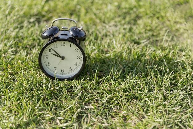 Despertador no gramado Foto gratuita