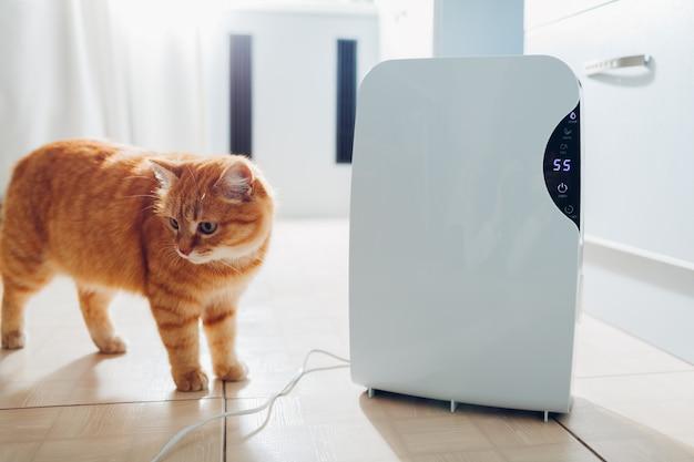 Desumidificador com painel de toque, indicador de umidade, lâmpada uv, ionizador de ar Foto Premium