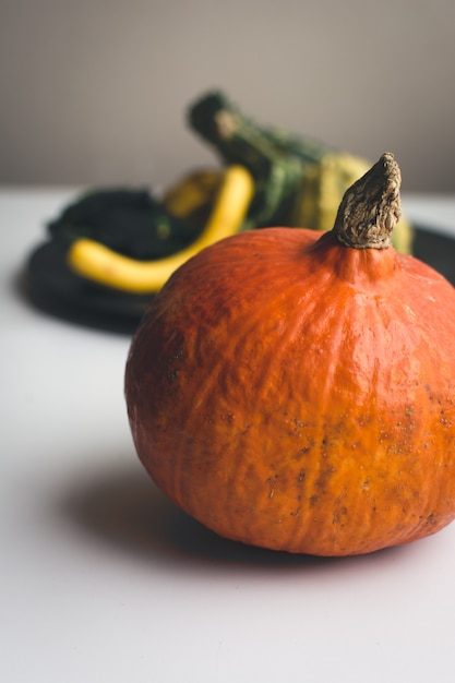 Detalhe de abóbora laranja outono Foto gratuita