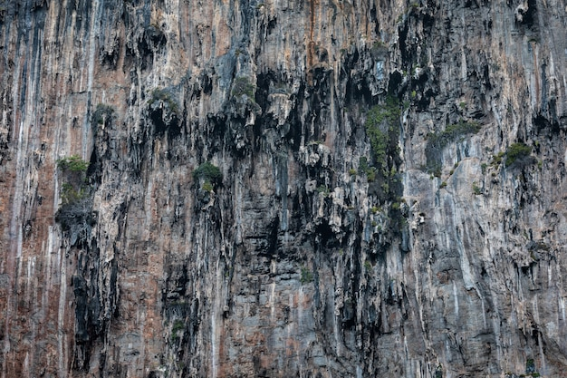 Detalhes da textura do penhasco da rocha na ilha do bi kra do mar tailândia Foto Premium