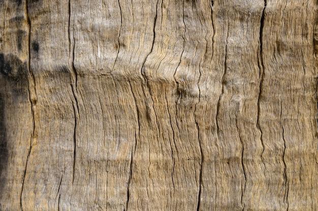 Detalhes de madeira padrão decorados Foto Premium
