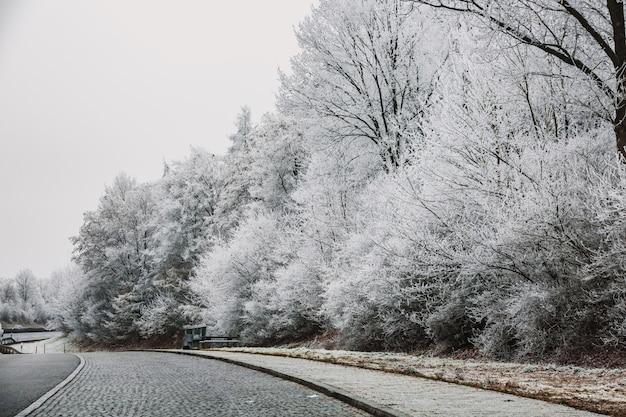 Dia de inverno de munique Foto Premium