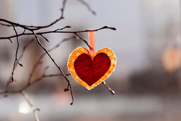 Dia dos namorados. coração decorativo vermelho no galho de árvore Foto Premium