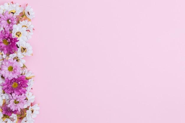 diferentes flores cobertas em fundo rosa