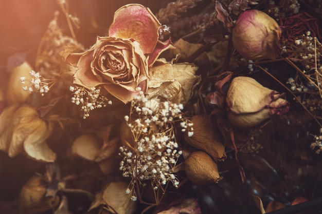 Diferentes flores secas capturadas através do vidro Foto Premium