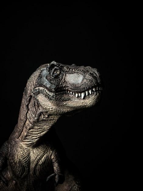 Dinossauro tiranossauro t-rex em fundo preto Foto Premium