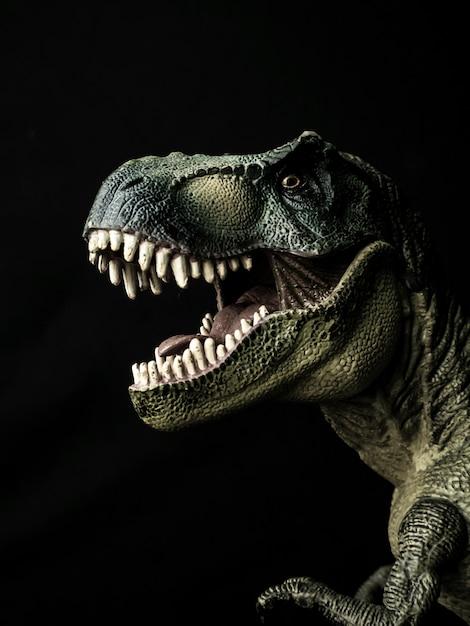 Dinossauro tiranossauro t-rex em preto Foto Premium