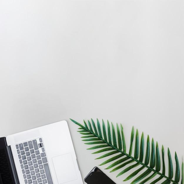 Dispositivos eletrônicos e folha verde fresca no fundo brilhante Foto gratuita
