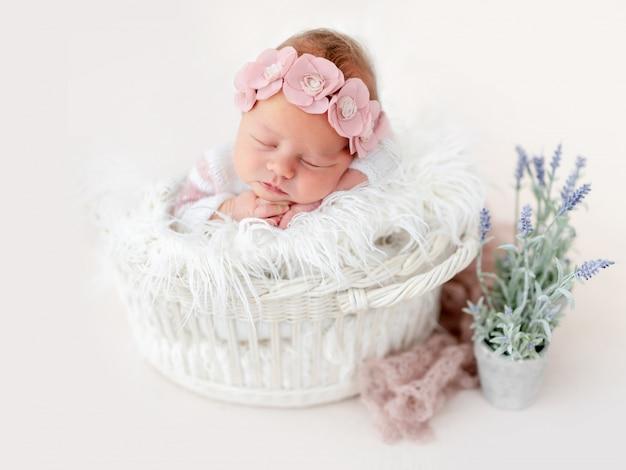 Doce recém-nascido na cesta Foto Premium