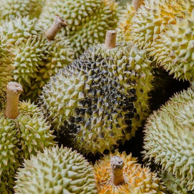 Doença infecciosa durian Foto Premium