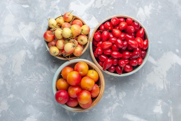 Dogwoods vermelhos com ameixas cereja e cerejas na mesa branca suco fresco maduro vitamina Foto gratuita