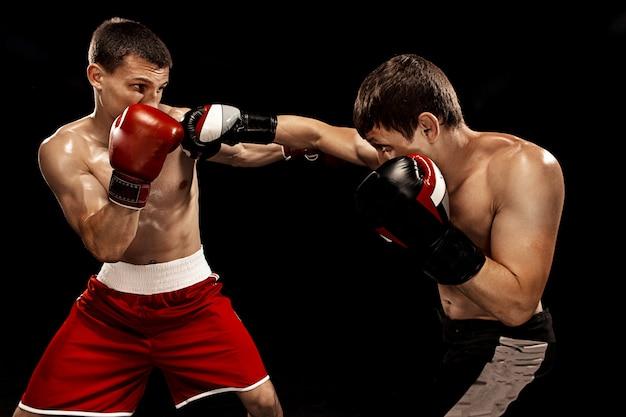 Dois boxeadores profissionais de boxe em fundo preto, Foto gratuita