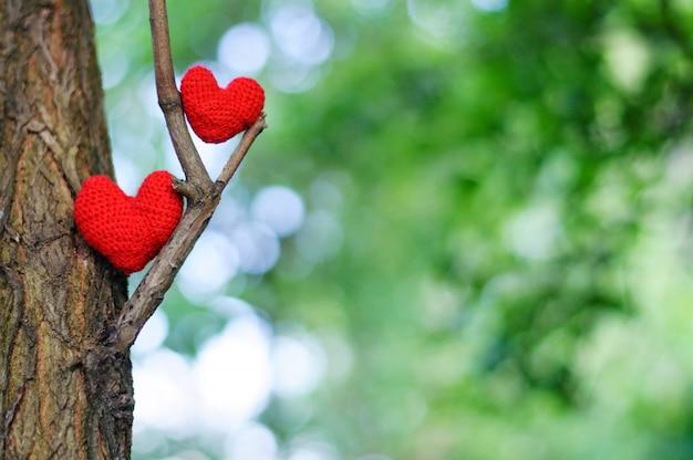 Dois corações vermelhos na natureza verde turva Foto Premium