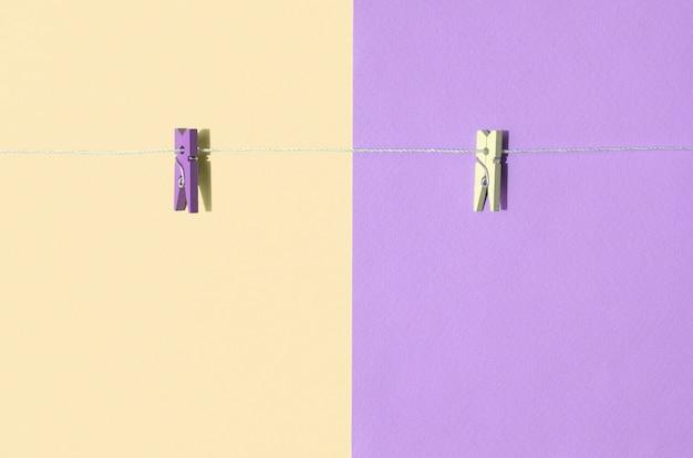 Dois pinos de madeira coloridos e pequena corda Foto Premium
