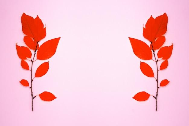 Dois ramos com folhas vermelhas, ameixa, sobre um fundo rosa claro Foto Premium